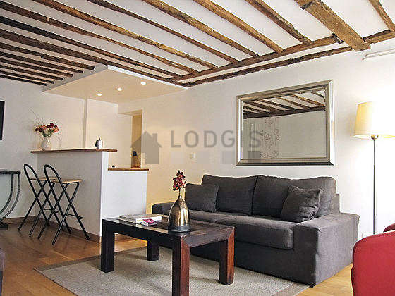 Very quiet living room furnished with 1 sofabed(s) of 160cm, dining table, coffee table, 2 chair(s)