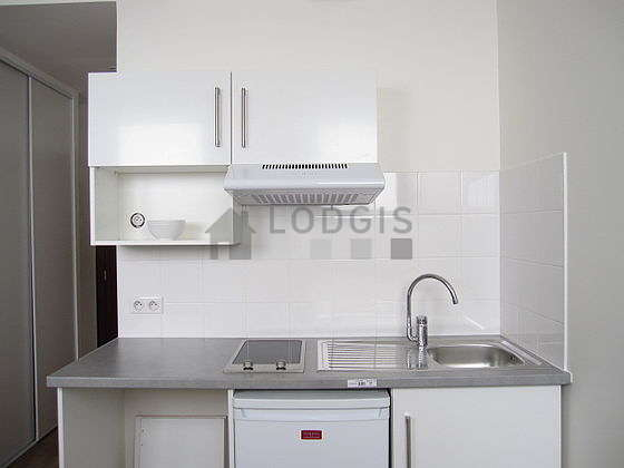 Kitchen equipped with hob, refrigerator, freezer, extractor hood