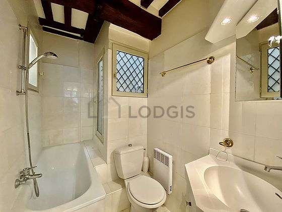 Bathroom equipped with shower in bath tub