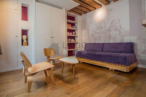 Séjour calme équipé de 1 canapé(s) lit(s) de 160cm, télé, ventilateur, 2 chaise(s)