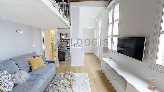 Great, very quiet and very bright sitting room of an apartment in Paris