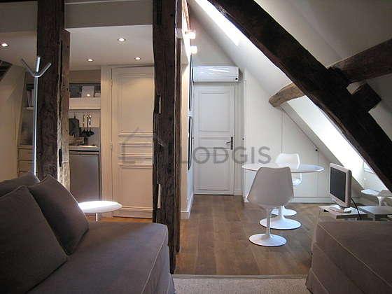 Magnifique séjour calme et lumineux d'un duplex à Paris